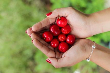 cherries-1082136_960_720