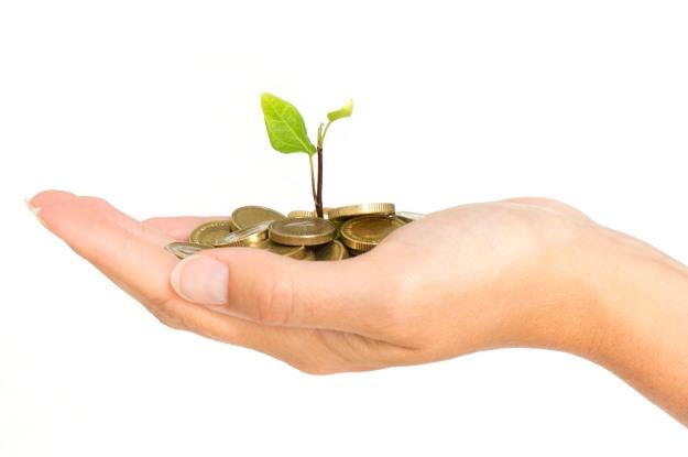 seed_capital