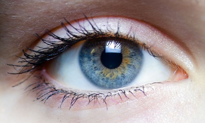 800px-Iris_-_left_eye_of_a_girl