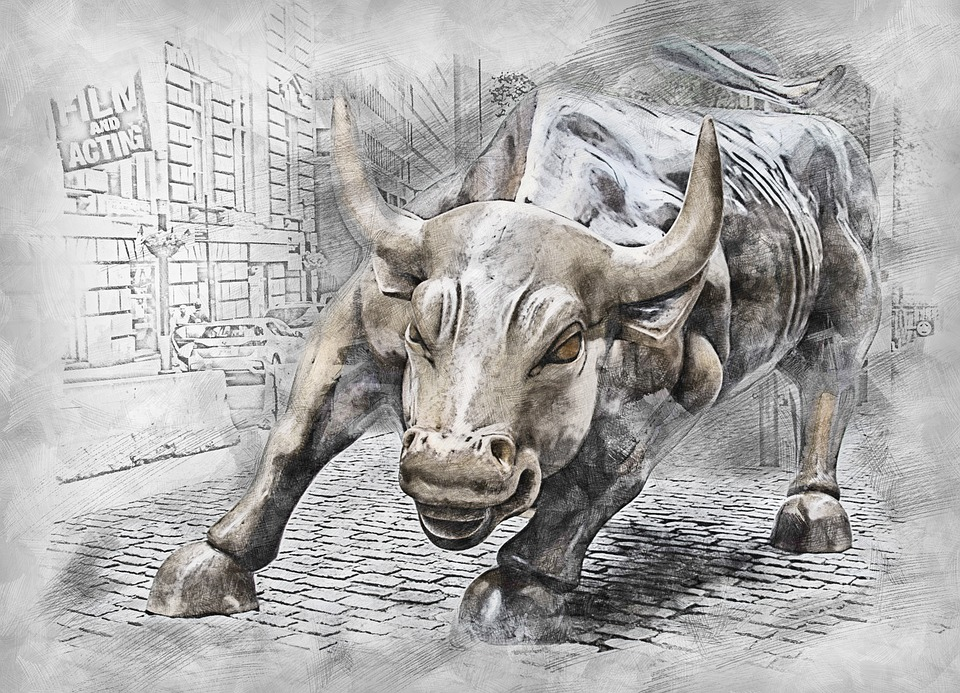 bull-3112617_960_720